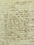 Henry Gahn to Susan Ursin Niemcewicz, February 12, 1811 by Henry Gahn